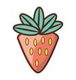strawberry sweet fruit vector image