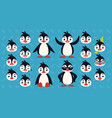 cute penguin constructor of vector image