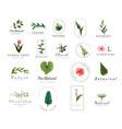 premium floral logo templates for weddingluxury vector image