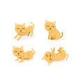 set cat isolated on white background art vector image vector image
