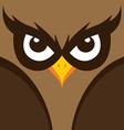 spooky owl theme vector image