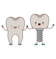 tooth and tooth implant with screw and holding vector image vector image