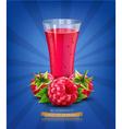 berry4 vs vector image