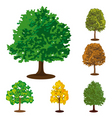 collection of isolated trees vector image