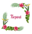Frame with tropical leaves and flowers Palms vector image vector image