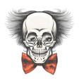 human skull in professor glasses and red bow tie vector image