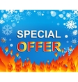 Big winter sale poster with SPECIAL OFFER SALE vector image vector image