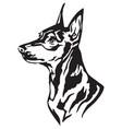 decorative portrait of dog miniature pinscher vector image vector image