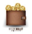 full bitcoin wallet brown color bitcoin vector image