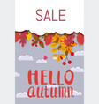 hello autumn sale discount season background vector image