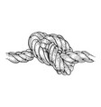 marine knot sketch engraving vector image