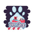 pet shop cat with pillow vector image