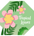 pink flowers palm leaf banner tropical leaves vector image vector image