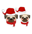 pug santa claus dog with red scarf vector image vector image