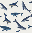 seamless whales vector image vector image
