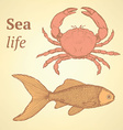 Sketch cute crab and fish in vintage style vector image vector image