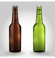Two green and brown glass beer bottle vector image