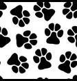 paw seamless pattern vector image