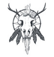 crow skull totem vector image vector image