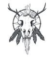 crow skull totem vector image