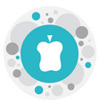 of fruits symbol on apple icon vector image
