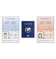 passport template international open passport vector image vector image