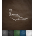 pheasant icon Hand drawn vector image