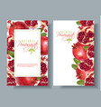 pomegranate vertical round banners vector image