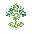 celtic tree life green weaved ornament vector image vector image