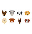 dog breeds icons in set collection for design vector image