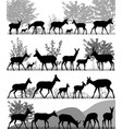 herd of pronghorns vector image vector image