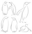 set of black line penguins on white background vector image