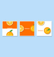 set of fruit banners with orange paper art vector image vector image