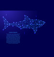 shark swimming from futuristic polygonal blue vector image