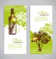 Banner set of vintage olive background vector image vector image