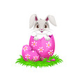 bunny cartoon animal with easter holiday egg vector image