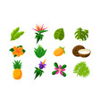 collection tropical summer exotic fruits vector image vector image