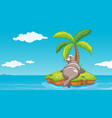 scene with gray seal on island vector image