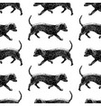 seamless background walking dachshunds vector image