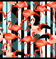 seamless pattern with flamingo tropical bright vector image vector image
