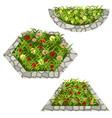 set of flowers to create garden scene vector image vector image
