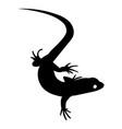 stylized lizard black white reptile vector image vector image