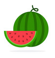 watermelon and a slice watermelon vector image vector image