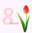 8 march flower tulip vector image