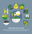 olives flat composition vector image vector image