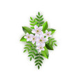 spring white flowers with leaves pattern vector image