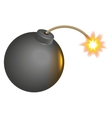 Black round bomb with burning wick vector image