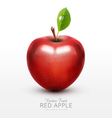 red apple with green leaf isolated vector image