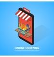 Buy shopping cart full of vegetables vector image