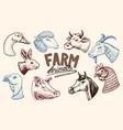 farm animals head a domestic horse pig goat vector image